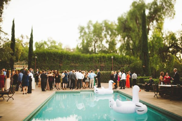 an-alpaca-almost-stole-the-spotlight-in-this-hummingbird-nest-ranch-wedding-42