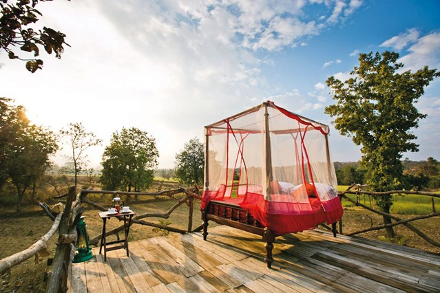 Jamtara Wilderness Camp, India