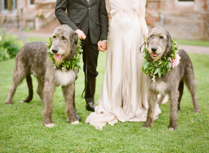 dog themed wedding ideas